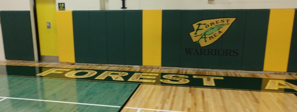School Logo in gym